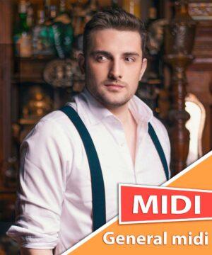 mirza-selimovic-imas-me-midi-karaoke-general-midi