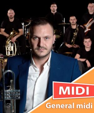 dejan-petrovic-big-band-vrtlog-midi-karaoke-general-midi
