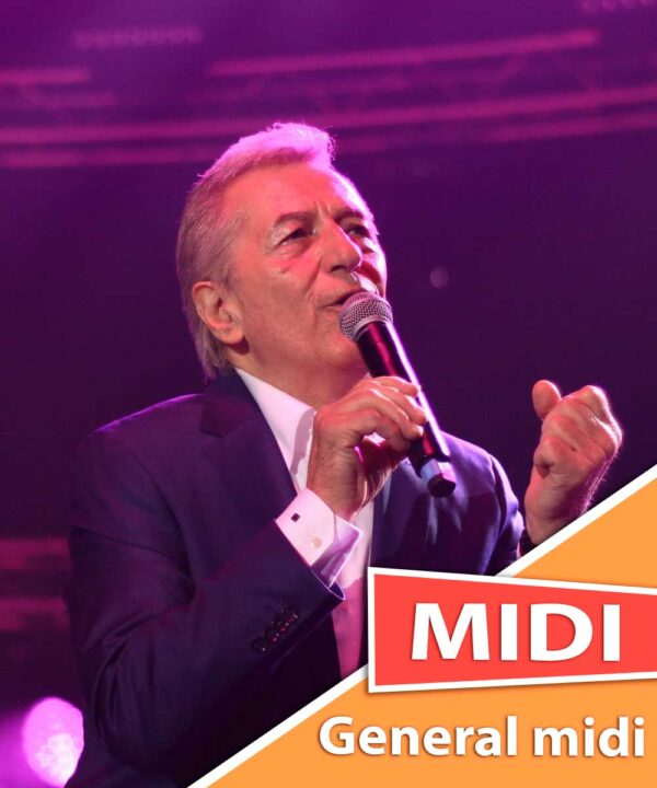 miroslav-ilic-ova-noc-midi-karaoke-general-midi