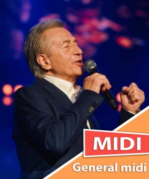 miroslav-ilic-bozanstvena-zeno-midi-karaoke-general-midi